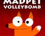 Madpet Volleybomb